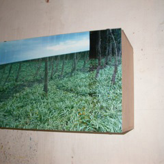 claudia schumann, from the series WOODS, 2004, 60 x 40 x 30 cm, object (wood, photography)